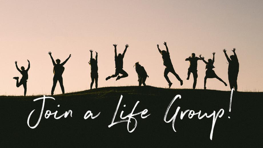 LifeGroup-web