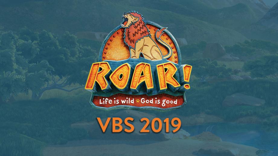VBS-web